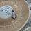 Thumbnail: VINTAGE Sterling Silver Moonstone Pendant