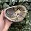 Thumbnail: Septarian Jasper Bowl
