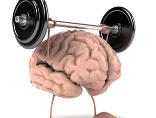 Physiotherapy for the Brain