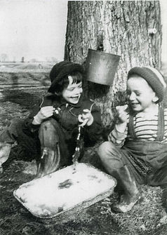 Black and white picture, young children eating maple taffy on snow