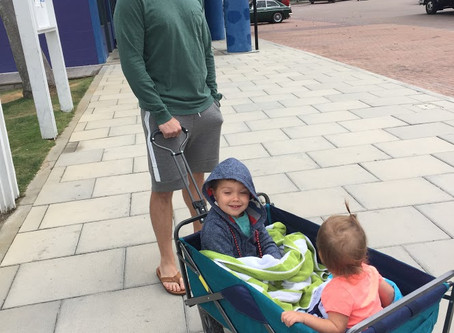 Looking for an Alternative to the Double Stroller...?
