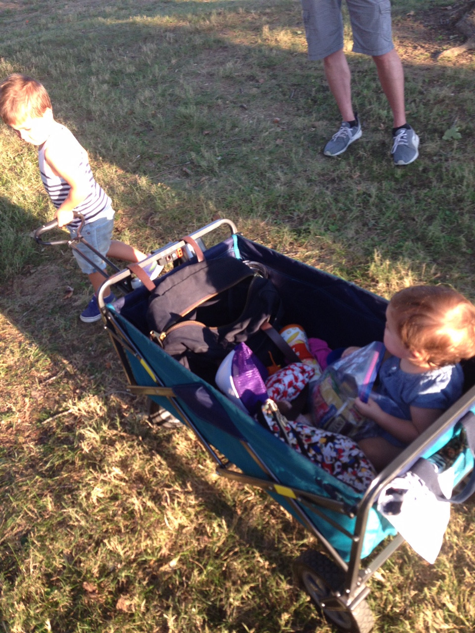 collapsable wagon, stroller hack, born happy, music festival, toddler, parent coach