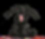 DeskTopHustlas-Logo.png