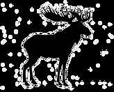 moose_edited_edited.png
