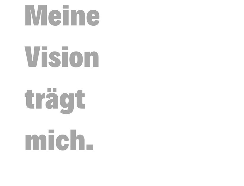 VISIONEN.