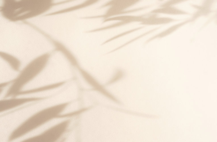 Abstract natural leaves shadows  backgro