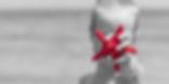 starfish_v5.PNG