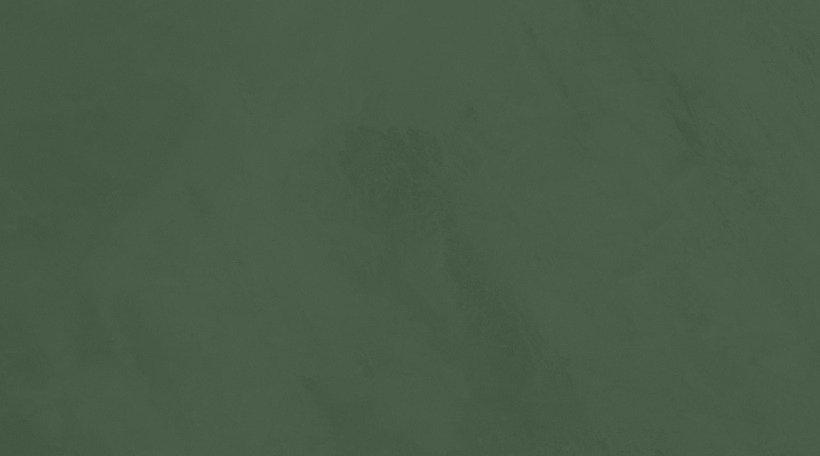 Dark Green Background.jpg