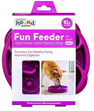 Fun Feeder Small (Purple)
