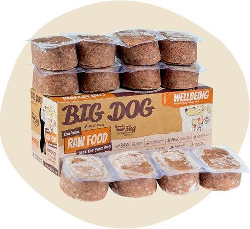 Dog Big Dog - Wellbeing