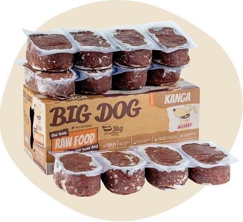Dog Big Dog - Kangaroo