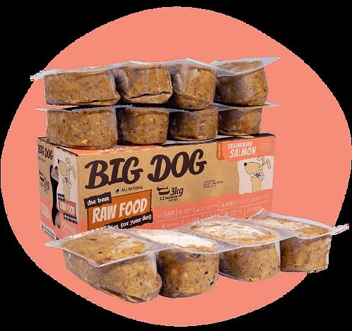 Dog Big Dog - Salmon