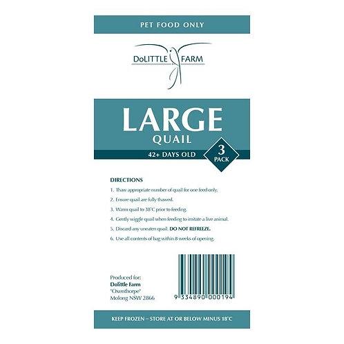 Large Quail 3 Pack