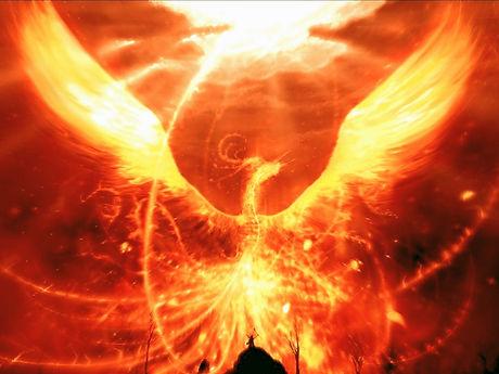 Majestic-Phoenix-1440x1080_edited_edited_edited.jpg
