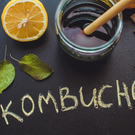 kombucha - en gude drik