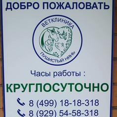 65242293_122822898971732_262411010230144