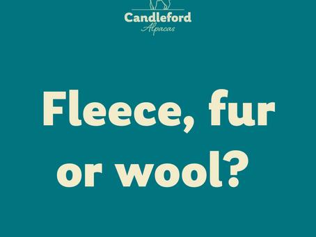 Alpaca Fleece Facts