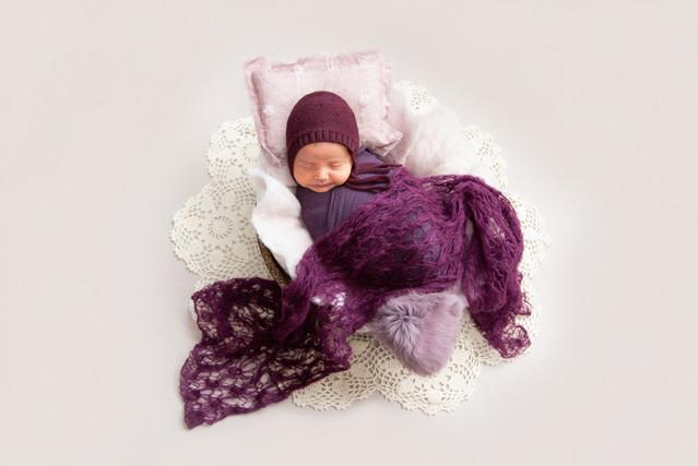 Baby asleep in tiny bed studio photoshoot by professional photographer Angela Scott