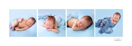 A series of sleeping baby newborn photos in the studio on a blue background