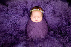 Newborn_Girls_Angela-Scott-low-res-6461.jpg
