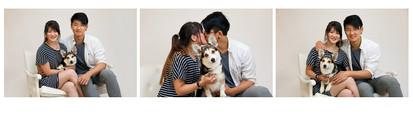 Pets_Amy_H_6x9-3serH.jpg