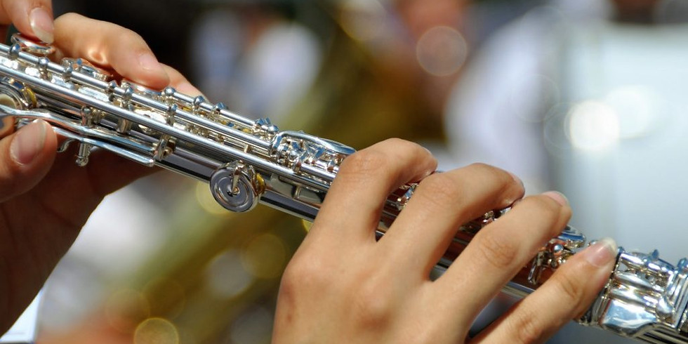 Woodwinds, Brass, Percussion Sectionals