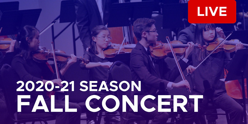 The 20th Concert In The Fall