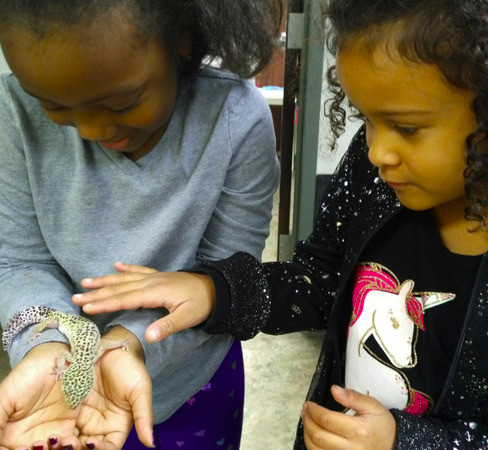 Payton and Idara petting a gecko