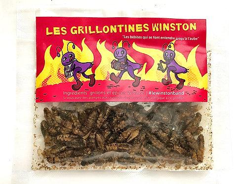 Les Grillontines Cajun (grillons comestibles)