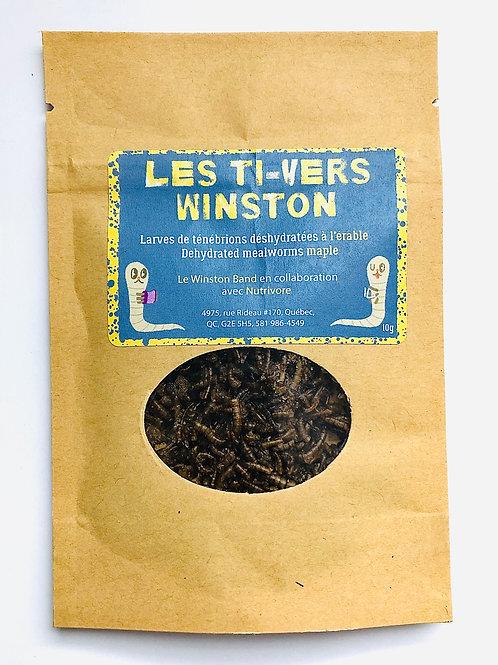 Les Ti-Vers à l'érable (larves comestibles)