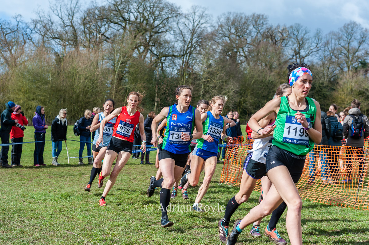 Inter-Counties XC 2019
