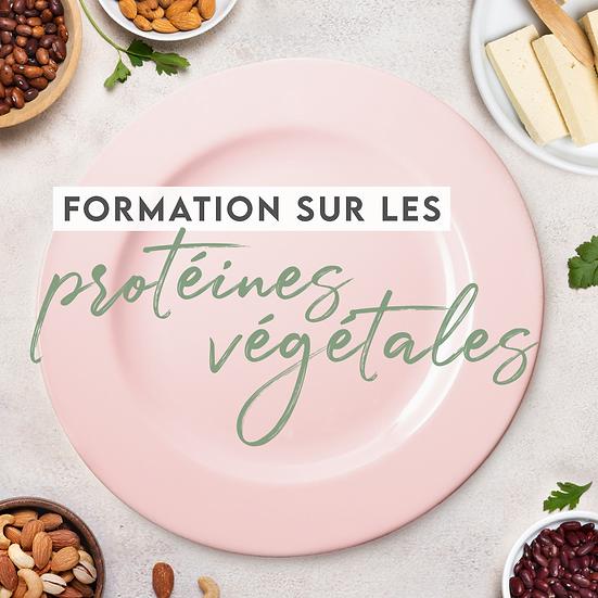 Formation sur les protéines végétales