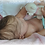 Thumbnail: Bebê reborn victoria
