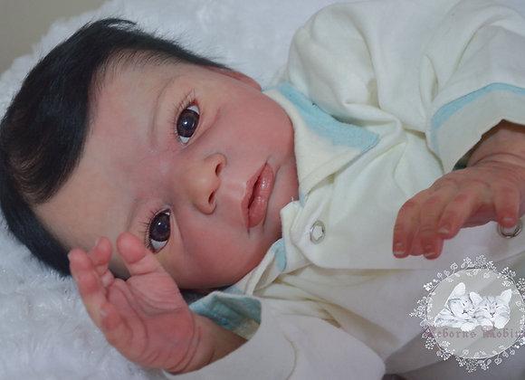 Reborn baby niclas