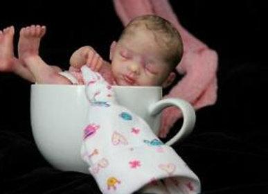 Mini baby Promisse