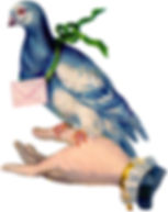 Carrier-Pigeon-GraphicsFairy.jpg
