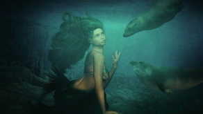 Seven Magical Selkie Facts