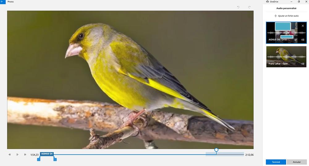 L'interface pour la gestion de la bande son de votre vidéo sous Photos de Windows 10