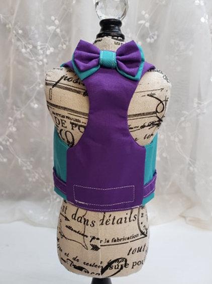 Coquin style harnais sarcelle et violet