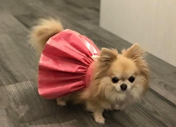 Robe Princesse sur commande