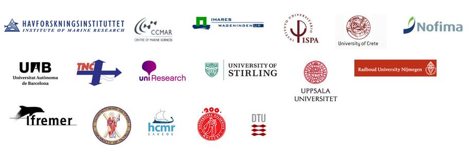 COPEwell consortium partners