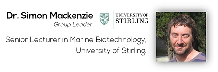 Dr. Simon Mackenzie (University of Stirling)