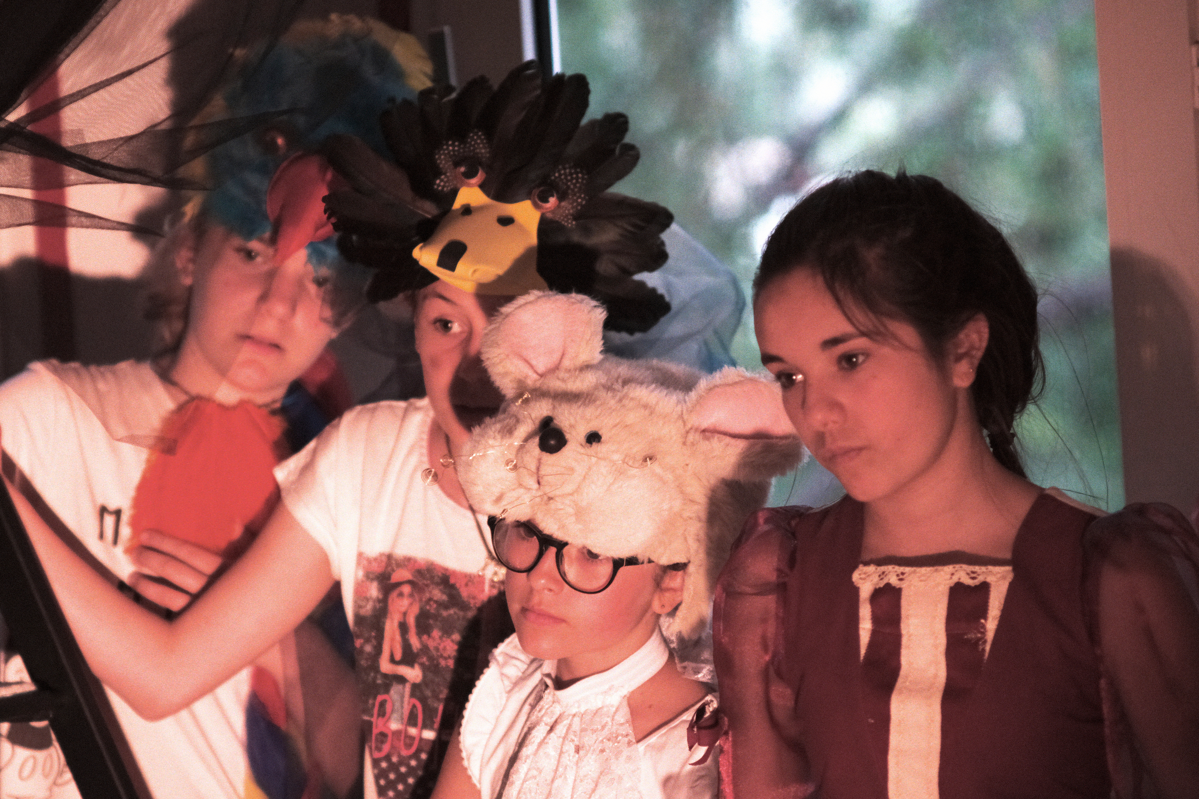 Alice, la souris, la cane et le lori