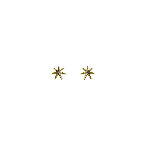 Broqueles Estrella Oro