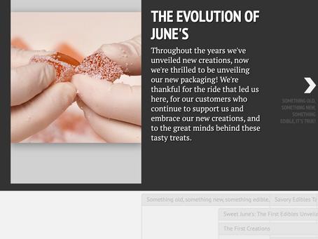 The Evolution of June's