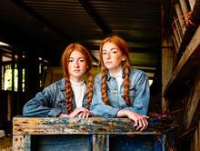 web Blue & Ginger.jpg