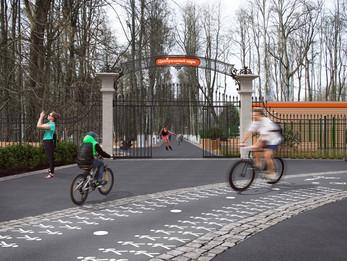 Общественное обсуждение в Центральном парке