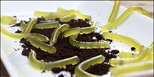 worms.png