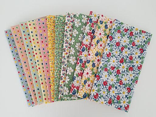 "Moda Fabrics ""Play All Day"" Half-Yard Bundle (12 pieces)"