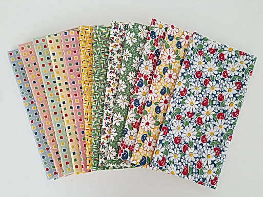 "Moda Fabrics ""Play All Day"" Half-Yard Bundle (12 pieces)"